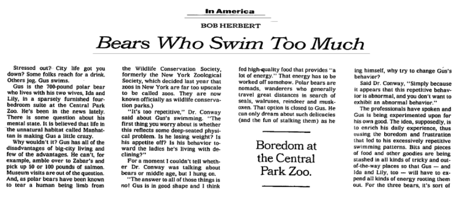 bears who swim too much - gus - funktionslust - 1994 New York Times - screenshot